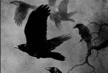 "Black Birds / ""Blackbird fly, blackbird fly, into the light of the dark black night."" - The Beatles"