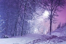 """Winter Wonderland / When the sun shines brightly from a clear blue sky, and the trees are dressed in fine white lace, and the quiet of solitude shelters my mind, then it truly is, """"The Most Wonderful Time of the Year!"""" -tjp"""
