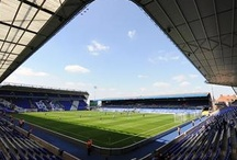 St. Andrew's / by Birmingham City Football Club