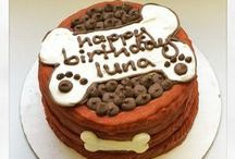 Birthday Cake For Dogs / Pampered Paw Gifts.com has THE BEST selection of yummy healthy gourmet birthday cakes for your fur babies! Period! Cakes made with carob not chocolate which is unsafe for fur babies.
