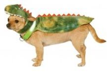 Halloween For Dogs / http://www.pamperedpawgifts.com/products-holidays-halloween.html