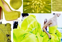 Citron / Inspired by the acid green that brings life to the vibrant wilderness, Surya has developed an array of rugs, pillows, poufs and throws in Chartreuse.  This striking yellow-green awakens every room it touches with buzzing energy.