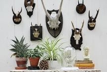 Tattoo Style by Janice Issitt / Interiors and styling influenced by tattoo themes and interests.  / by DIY BOHO HOME