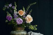 Dutch Master Style Photos / by DIY BOHO HOME