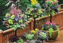 Garden Art / by Joan Altman