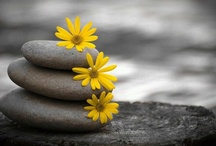 Rockin Stones / by Linda Uhl