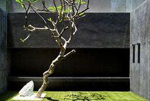 Minimalist Garden / Planning new garden