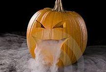 Halloween / by Donna Garrett