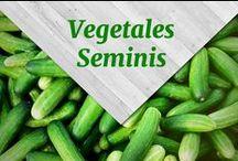 Vegetales Seminis / Conoce toda la variedad de productos vegetales #Seminis que cultivamos con amor para tu familia.