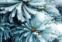 Winter Wear, Whimsy & Wonder / by Britta