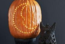 Pumpkins / Home decor, fall decorating, autumn decor, seasonal projects, DIY, home decorating ideas, DIY projects, pumpkin decorating, pumpkin carving, how to decorate with pumpkins, pumpkin styling, fall, gourds, holiday decorating, how to, and inspiration for using and decorating with pumpkins. / by Decor Adventures