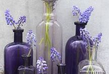 The Pottery Barn President Loves Purple! / It's true! Our President loves all things lavender, violet, eggplant and more.  / by Pottery Barn