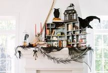Halloween / by Decor Adventures