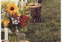 future wedding ideas!  / by Pammie Daugherty