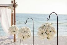 Destination Wedding / by Vistaprint