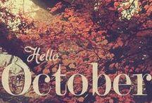 Mood board October/November/December