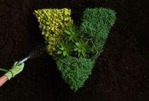 Vistaprint Green / by Vistaprint