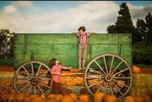 A U T U M N / Autumn / fall photography inspiration
