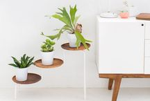 DIY | create. / by Vegetarian 'Ventures