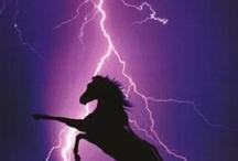 I love lightening storms! / by Leslie Roselip