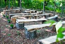 Natural wood projects