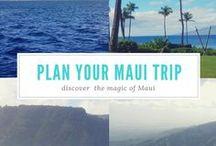 MAUI / Maui, Hawaii, Whale watching, hiking, waihee, Road to Hana, Lahaina