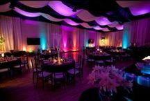 Wedding Reception / Wedding and Party reception and decor ideas. / by Wedding and Party Network