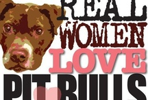 Pitbull Love / I Love my Pit Bull!  / by Maria Mendoza-McCain