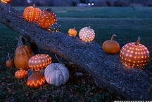 Fall....pumpkins, spices, and everything nice! / Pumpkins, comfort food, and giving thanks at Thanksgiving!   / by Sheri Benny