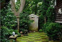 Gardens, plants and balcony inspiration
