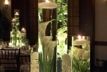 Party Planning / Party and Entertaining Ideas