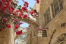 الشرق الأوسط / Middle East / Everything wonderful of the Middle East
