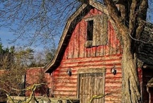 Barns & Timber Frames / by Cheryl Tait Morrison