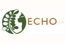 Charities of the Month / Clean Spirited donates $1 from every sale to an Environmental Charity.  / by Clean Spirited