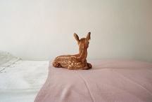 deer / by Diane