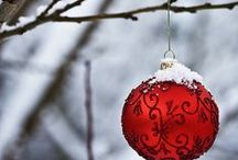 Tis the Season / by Cindy Carlson