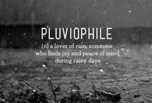 Rain / All things associated with rain!