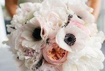 Weddings and Fancy / by Cirina Hassler