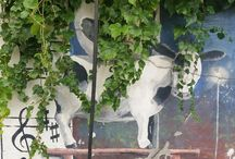 Korean: Street Art / Crazy creative and fun loving street art in Korea