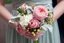 Weddings / by Candice Jones