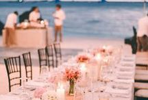 Beach Wedding / Many brides are deciding to go with the beach wedding these days because they can be much cheaper and let's face it, more fun. Beach theme weddings are not just about a blue color palette. Your beach wedding can have any color palette you desire. By adding sand, seashells and tropical flowers you can make the beach wedding of your dreams.
