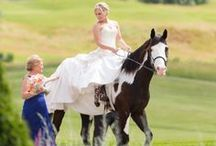 Western Wedding / Western theme wedding ceremony and reception decorations, favors, and gift ideas. Explore everything from wedding cakes to ceremony and reception table decoration ideas for your western or cowboy theme wedding.