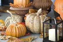 Fall Decorations / by Bee and Daisy Party Studio