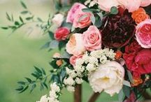 Styled Shoot / Styled shoot concepts