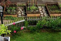 Outdoor Rooms & Gardens