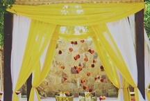 My Hindu Wedding Ceremony / Hindu wedding ceremony will take place in a forest and be surrounded by a lot of greenery.  It will have a romantic feel.  The decor will be in yellow to give a pop of color (along with white and gray).  The lunch afterwards will be on the lawns in the forest which will feel like you're at a garden party.