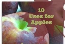 Food | Apples!  / All things Apples! Homeschool curriculum, books, recipes, and beyond!
