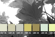 YOLO Colorhouse LEAF color family / YOLO Colorhouse LEAF color family notes: • tranquil and restful • livable and serene • quiet and neutral to dramatic and daring • open-hearted gathering spots • brings the outside in / by Colorhouse Paint