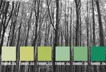 YOLO Colorhouse THRIVE color family / YOLO Colorhouse THRIVE color family notes: • relaxed and kicked back • nurturing • soft and restful to bold and dramatic • bedrooms, kitchens, dining rooms     and living rooms / by Colorhouse Paint