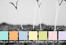 YOLO Colorhouse SPROUT color family / YOLO Colorhouse SPROUT color family notes: • soft, gender-neutral colors • create dreamy spaces for life's newcomers • playful, with a balance of style and design • gentle on people, big and small / by Colorhouse Paint